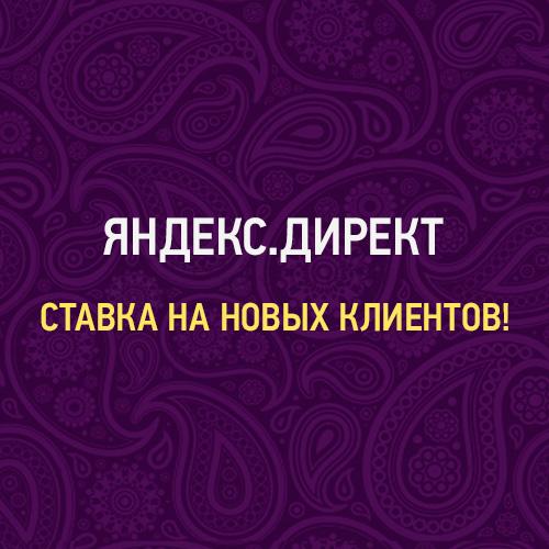 Яндекс.Директ - ставка на новых клиентов